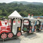 Miniature Train Rides for Sale