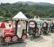 Christmas Themed Train Rides for Sale